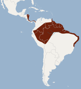 Distribution of Glyphonycteris daviesi.png