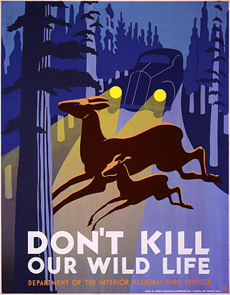 Deer–vehicle collisions - Early 20th century poster from the United States Park Service concerning wildlife-vehicle collisions.