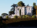 Donjon du château de Langeais.jpg