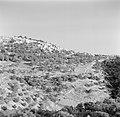 Dorp gezien vanuit het dal, Bestanddeelnr 255-0175.jpg