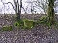 Downs Banks Bench Mark - geograph.org.uk - 1701075.jpg