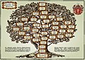 Drevo roda Afonasenko.jpg