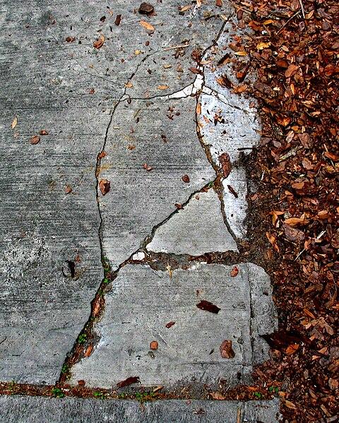 File:Driveway cracks near mulch.jpg