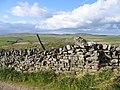 Dry stone wall and parish boundary - geograph.org.uk - 605627.jpg