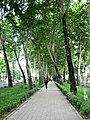 Dushanbe City Walk (17519022266).jpg