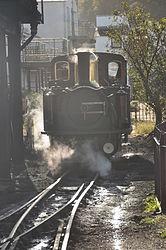Earl of Merioneth at Porthmadog Harbour railway station (8365).jpg