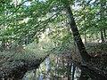 East Bradford Township, PA, USA - panoramio (6).jpg