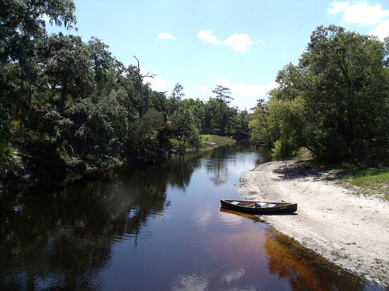 File:Econlockhatchee River from the Florida Trail bridge.jpg