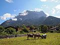 Ehrwald view.jpg