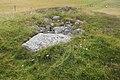 Ekornavallen (Raä-nr Hornborga 29-1) gånggrift 2553.jpg