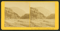 Elephant's Head, Crawford Notch, White Mountains, by Kilburn Brothers.png