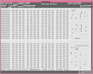 Elvis (text editor) - Example of Elvis' hexadecimal editing mode.