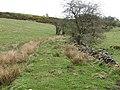 Embankment on the 1785 Caldon Low Railway - geograph.org.uk - 779095.jpg