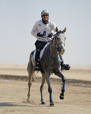 Mohamed Alabbar - Mohamed Alabbar taking part in Emirates Challenge 5th Jan 2013, Wathba