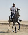 Endurance Racing Mohamed Alabbar.JPG