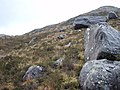 Erratics on the slopes of Meall na Mèine - geograph.org.uk - 669190.jpg