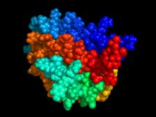 Prostorový model erytropoetinu
