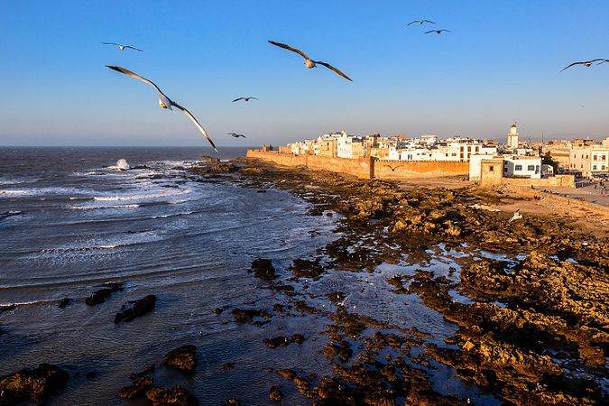 Essaouira Atlantic.jpg