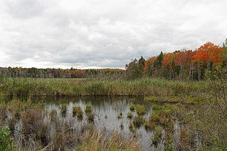 Windsor, Massachusetts - Eugene Moran Wildlife Management Area