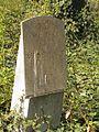 Evangelický hřbitov ve Strašnicích 19.jpg