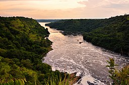 The river in Uganda