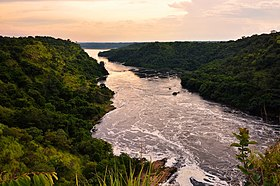 Evening Nile River Uganda