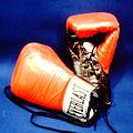 Everguard Fight Gloves.jpg