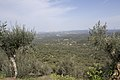 Evoramonte (35611301362).jpg
