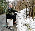 Ewald Friesacher Gartenarbeit 01.jpg