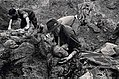 Exhumations in Srebrenica 1996.jpg