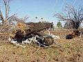 FEMA - 534 - Photograph by John Shea taken on 12-29-2000 in Arkansas.jpg