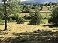 FR4301334 & FR4312013 - Zone Natura 2000 - pelouses sèches et prés de fauche de Charchilla.JPG