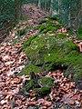 Fallätsche South Moss in Autumn.jpg