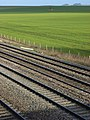 Farmland and railway, Cholsey - geograph.org.uk - 720519.jpg