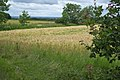 Farmland near Spring Clump - geograph.org.uk - 1390725.jpg