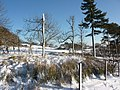 Farmland under snow - geograph.org.uk - 1628457.jpg