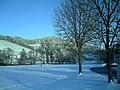 February Sun Valley Glottertal Galery - Mythos Black Forest Photography 2013 - panoramio (3).jpg