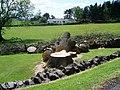 Felled tree by walk to Loch Humphrey - geograph.org.uk - 828547.jpg