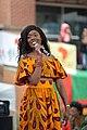 FestAfrica 2017 (23722819728).jpg