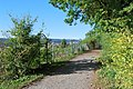 Feuerbacher Höhenweg in Greutterwald.jpg
