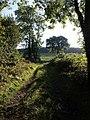 Field access track near Clampitt - geograph.org.uk - 578670.jpg
