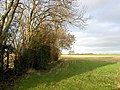 Field edge off Hollins Lane - geograph.org.uk - 312463.jpg