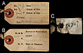 Field labels attached to the skin of BMNH 1939.3315 - ZooKeys-255-103-g007.jpeg