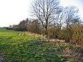Fields by the River Gwash - geograph.org.uk - 317758.jpg