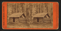 First log hut erected in the grove, Mariposa Grove, by E. & H.T. Anthony (Firm) 3.png
