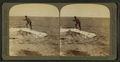 Fisherman at lake turning to cook in a boiling spring the trout just caught, Yellowstone Park, U.S.A, by Underwood & Underwood 3.png