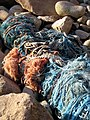 Fishing nets on the beach at Porth Nanven - geograph.org.uk - 1107331.jpg