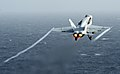 Flickr - Official U.S. Navy Imagery - An F-A-18 launches from USS Abraham Lincoln..jpg