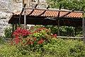 Flowers in Zagora-Mouresi (17235375333).jpg