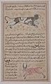 Folio from a `Aja'ib al-Makhluqat wa Ghara'ib al-Mawjudat (The Wonders of Creation and the Oddities of Existence) MET sf1975-192-8r.jpg